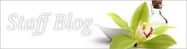 ブログ エリカのブログ
